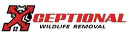 Sterling Wildlife Removal